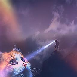 freetoedit giantcat surreal irclightbeam lightbeam