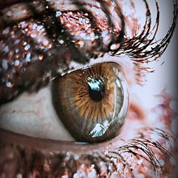 freetoedit eyecloseup sparkel shiny light