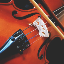 pcmusicalinstruments musicalinstruments freetoedit