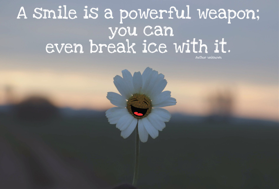 Have a fantastic day #daisy #flower #flowerpower #quotesandsayings #happiness