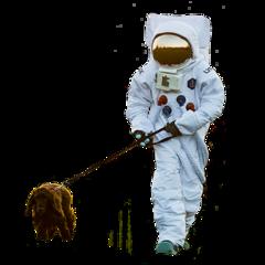 astronaut dog walk walking freetoedit