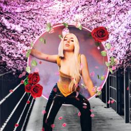 freetoedit avamax myedit roses cherryblossom ircavamaxfanart AvaMax sweetbutpsycho