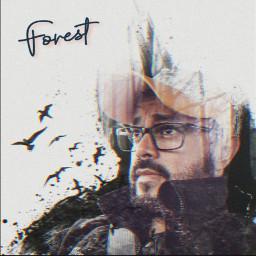doubleexpusure freetoedit forest me cooledit