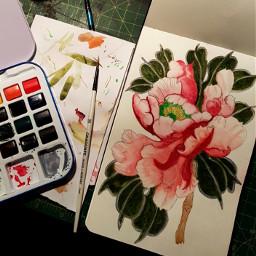 watercolor watercolour peony peonyflower flower