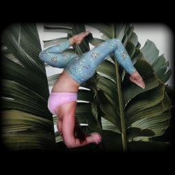 freetoedit yogalife yoga yogaeveryday armbalance