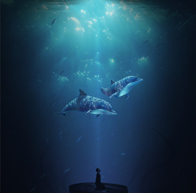 #freetoedit #underwater #ocean #dolphins #myedit
