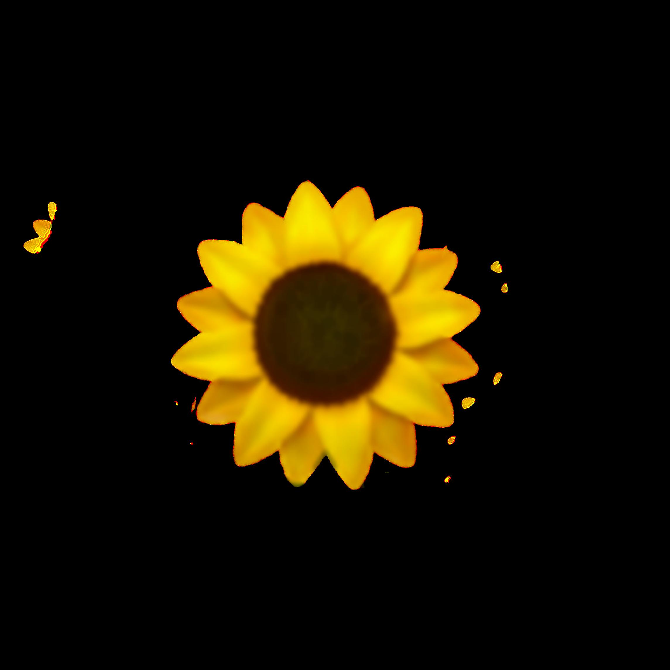 sunflower yellowaesthetic yellow emojiiphone emoji...