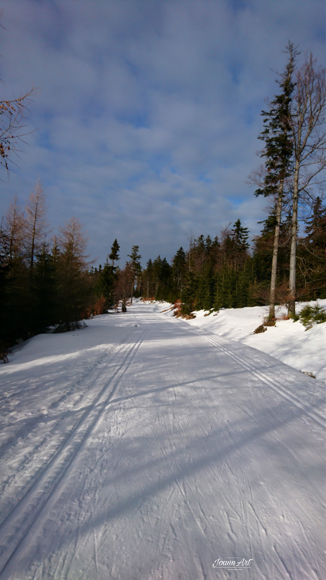 #freetoedit #landscape #snow #winter #skirun #road  #forestroad #skitrail #photography #myphoto #nofilters #beautifulnature #beautifulday
