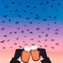 freetoedit ircsunset sunset