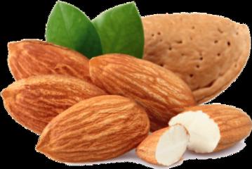 almonds nuts freetoedit