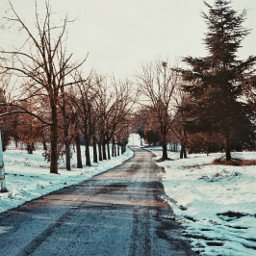 myphotography snow winter path nature freetoedit