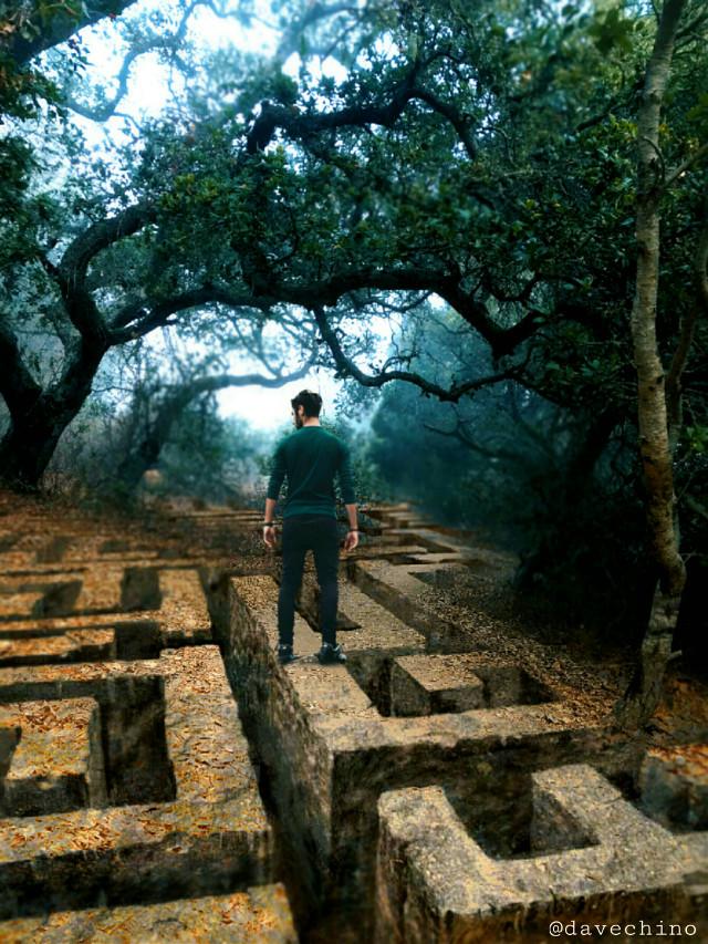 #labyrinth #tree #man @freetoedit @picsart #conseptual #surreal #surrealist #be_creative #myart #myedit