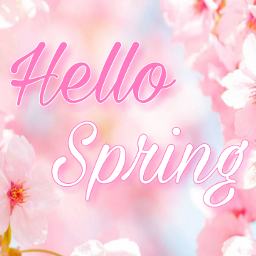 spring wallper flower hello hellospring