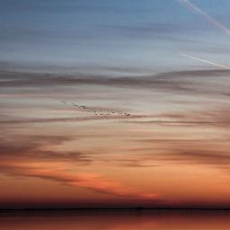 freetoedit evening eveningsky heaven sky