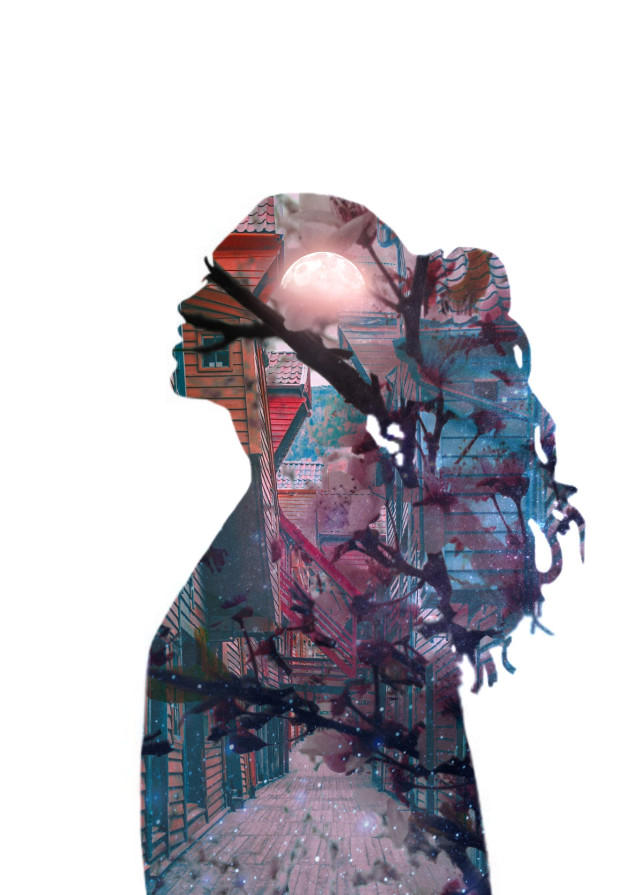 #freetoedit #doubleexposure #overlay #silhouette #girl #stars #galaxy #flowers #red #pink #blue #moon -- sorry for the wait but i have no idea what you want from me