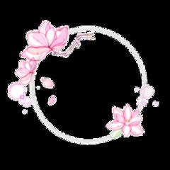 aesthetic frame circle circleframe exo freetoedit