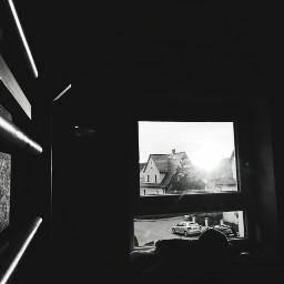 freetoedit blackandwhite window teddybear sunlight