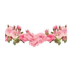 flower flor flowers flores pink freetoedit
