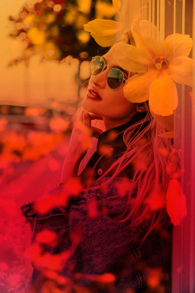 #freetoedit #flowers #colorful #dream #love #marigold #background #picoftheday #picsart #picsartedit #picsarteffects #begold👑 #myedit