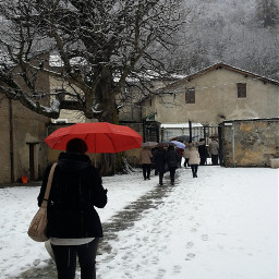 freetoedit umbrellas snow people myphotography pcumbrellasisee