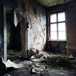 freetoedit old building lostplace abandoned scary