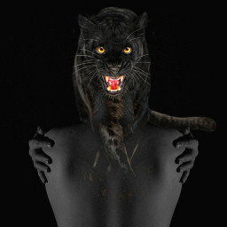 freetoedit faceart panther surreal fantasy srcpanthers
