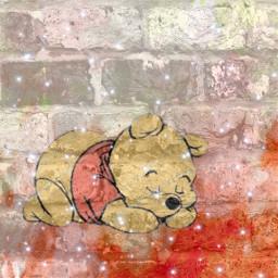 freetoedit winniethepooh winnerjinwoo winnerseungyoon winnie-the-pooh
