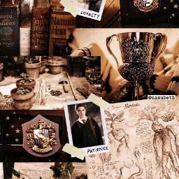hogwarts hogwartsismyhome hogwartshouses hogwartsexpress jkrowling