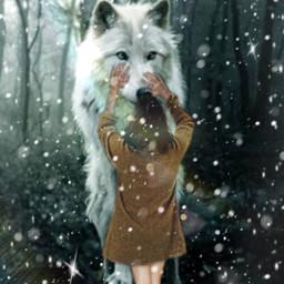 freetoedit wolf galeria ircgallery gallery