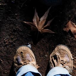 hike boots leaf ground lifestylephotography freetoedit