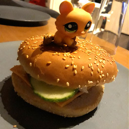 hamburger lps lol
