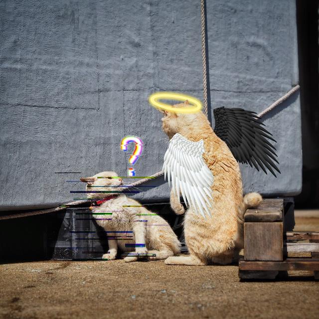 #freetoedit #glitch #angel