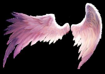 wings freedom angel fall wing freetoedit