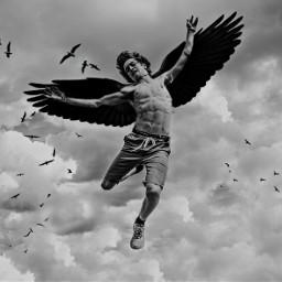 freetoedit novata😀 angel followforfollow shareme
