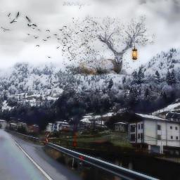 freetoedit mountainlife deerqueen birds lamp