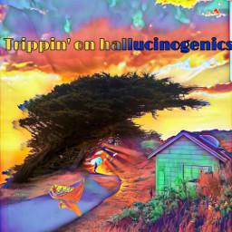 freetoedit hallucinations mymindseye colorsofnature