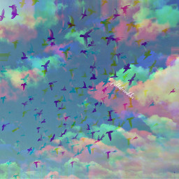 freetoedit sky birds iran