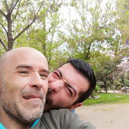 freetoedit love rikarxfin83 pivon bears freetoeditstickers pcpeopleinparks