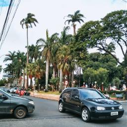 freetoedit urban street cars trees