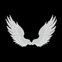 angels wings angel poland freetoedit