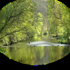 ftestickers landscape trees river lake freetoedit