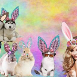 freetoedit bunny ears multicolored funny srceasterbunny