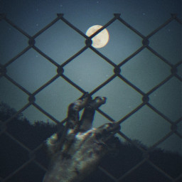 freetoedit zombie hand creepy night