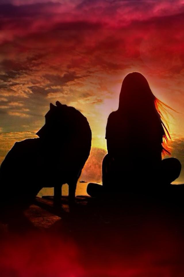 #freetoedit  #ircfullpinkmoon #fullpinkmoon#wolf#sun#sunset