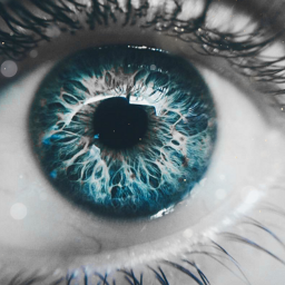 freetoedit colorsplash colors blue eyes eccolorsplasheffect