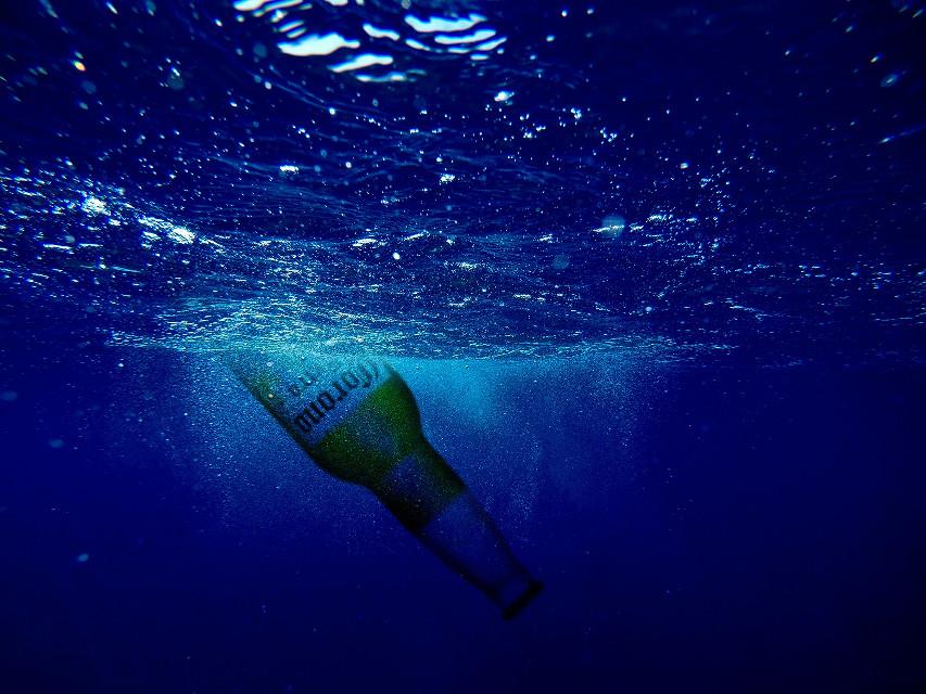 #freetoedit #sea #water #toronto #beer