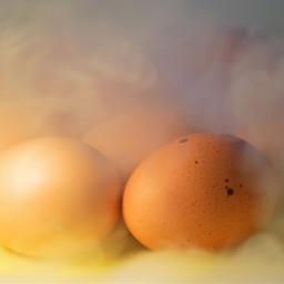 freetoedit photography stilllifephotography eggsforbreakfast