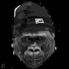animal monkey monkeystickers monky face fte ftestickers freetoedit