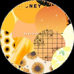 circle yellowcircle kailallyn tumblr freetoedit