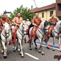 freetoedit parade costumes horses myphoto pchorses